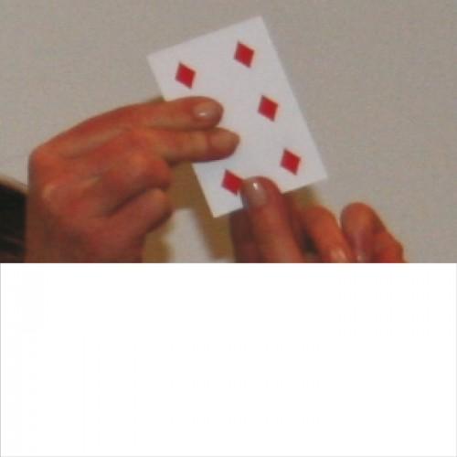 Zauber Multipip klein_01